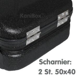 10er Case Scharnier 50x40