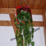 Kanister Blumenampel zum Aufhängen